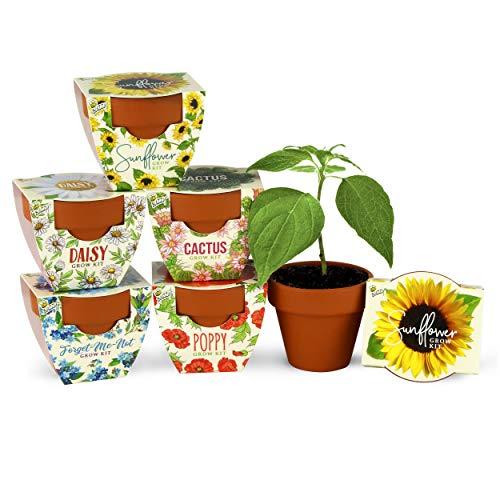 Terracotta Mini Grow Pots