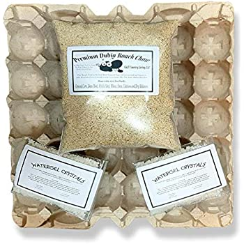 Cricket & Dubia Roach Colony Starter Kit - Includes 6 Egg Flats, Premium Dubia Roach Chow Cricket Food (1 lb), 1-(2 oz packet) Water Gel Granules (2 oz Total)   Raise Dubia Roaches Crickets