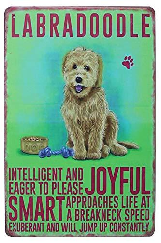 Hioni Labradoodle Joyful Smart, Cartel de metal, placa metálica con diseño de Slogan Art Decor Vintage Pr Bar Cafe Pub