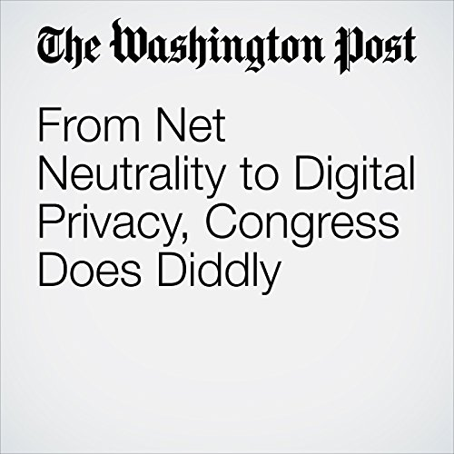 From Net Neutrality to Digital Privacy, Congress Does Diddly audiobook cover art