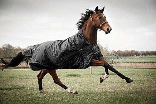 CATAGO Outdoordecke Justin für Pferde, 300g - schwarz - 145 cm