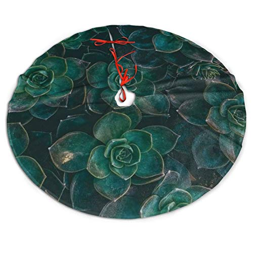 Ridenfs Merry Christmas Tree Skirt Succulent Table Top, Large Tree Mat Cover for Xmas Holiday Party Supplies Halloween Decoration Ornaments 30/36/48 Inch