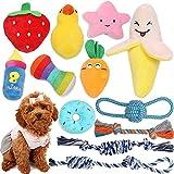 Feeko Quietschendes Welpenspielzeug aus Plüsch, 12 Stück Hundespielzeug, Kauspielzeug für Welpen, Hundespielzeug Welpe Hundespielzeug Set Hundezubehör, sicher, ungiftig interaktives Haustierspielzeug