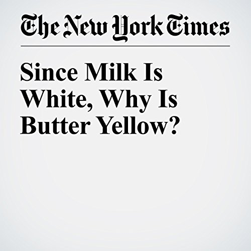 Since Milk Is White, Why Is Butter Yellow? audiobook cover art