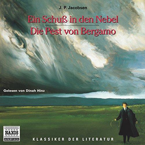 Ein Schuss in den Nebel - Die Pest von Bergamo audiobook cover art