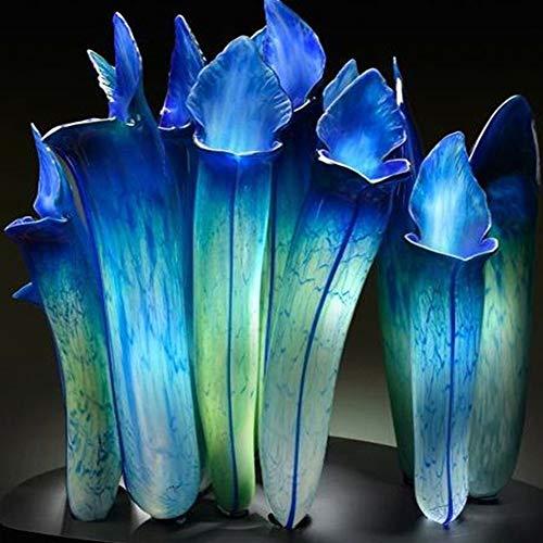 20 Stück Nepenthes Seeds Garten Balkon Dach Bonsai Fleischfressende Kannenpflanze Nepenthes Samen blau (20 STÜCKE)