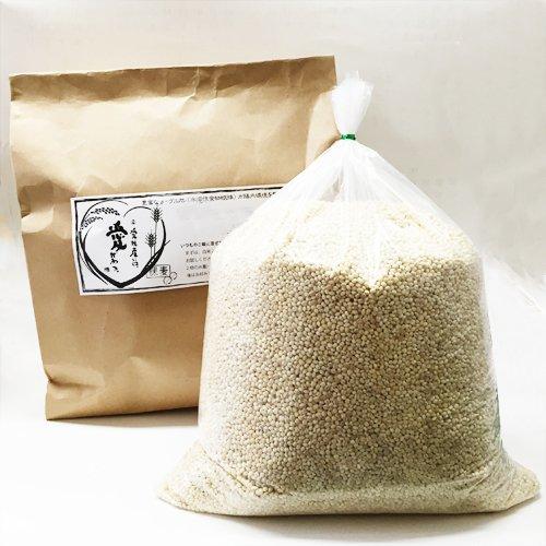 マルヤス味噌 愛媛県産 はだか麦 裸麦 5kg