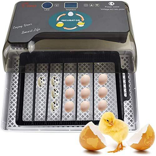 FCX-SHEARS Brutmaschine Vollautomatisch Hühner Eier Brutgerät, mit Effizienter LED Beleuchtung Feuchtigkeitsfest Energiesparend Kühltechnologie bis 35 Eier