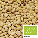 500g de pignons de cèdres sibériens biologiques provenant de la collecte sauvage - NOUVELLE RÉCOLTE - noix biologiques non traitées et sans additifs