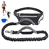 cyrico Hands Free Dog Leash for Running Training Walking, Extendable Bungee Dog Running Waist Leash for Medium and Large Dogs, Dual Handles Adjustable Waist Belt with A Free Dog Bowl