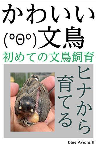かわいい文鳥 初めての文鳥飼育 ヒナから育てる