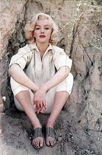 ERTYG 1000pcs Puzzle Rompecabezas Puzzles para Adultos Póster de celebridades Marilyn Monroe Brain para Adultos y niños DIY Juguetes Regalo