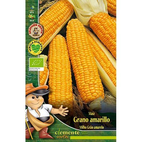 Semillas ecológicas de Maiz Grano Amarillo