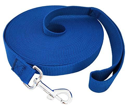 TAIDA Hundeleine aus Nylon, 6 m, 9 m, 10 m, 15 m lang, für kleine mittelgroße und große Hunde, Lange Leinen, für Gehorsamkeit, Rückruf-Training, Camping oder Hinterhof, 2,5 cm breit, 40 Foot, blau