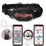 🐾 findPet Localizador GPS para Gatos y Perros [GPS Mini 2021]. El Collar GPS para Perros y Gatos más Ligero del Mundo, 20gr. Ubicación en Tiempo Real y Seguimiento de Actividad 24h