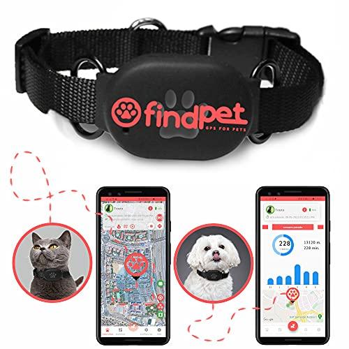 findPet - Localisateur GPS pour chats et chiens [GPS Mini 2021]. Le collier GPS pour chiens et chats le plus léger du monde, 20 g. Emplacement en temps réel et suivi d'activité 24h