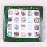 EsportsMJJ Au Piedras Preciosas Naturales Piedra Variedad Colección Cristales Kit Mineral Geológico Materiales Didácticos - #2