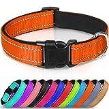 Joytale Collar Perro Reflectante,Nylon Collar Acolchado con Neopreno,Ajustable para Perros Pequeño,22-30cm,Naranja