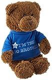 GUND I'm the Big Brother T-Shirt Teddy Bear...