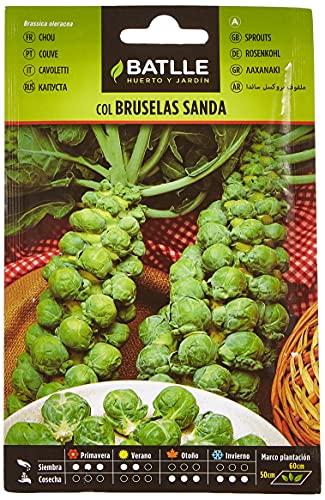 Semillas Hortcolas - Col Bruselas Sanda - Batlle