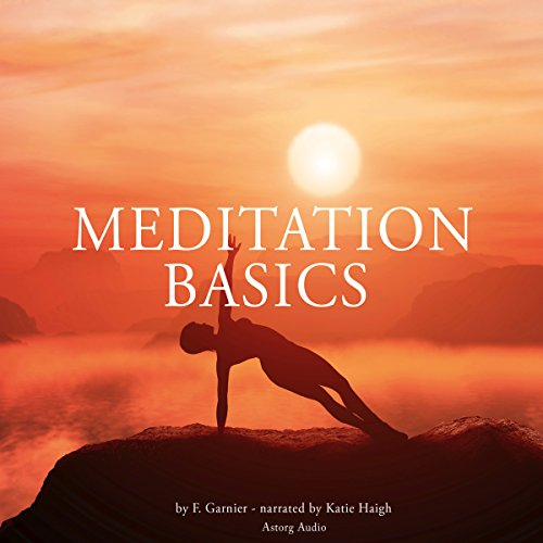 Couverture de Meditation basics