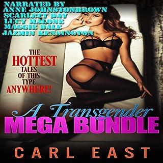 A Transgender Mega Bundle audiobook cover art