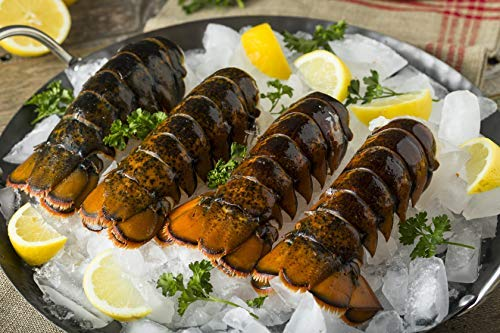 (10 Pack) Fresh Frozen Maine Lobster Tails 5-6 oz | Fresh and Fast Delivery | From the #1 Lobster Food Delivery Company
