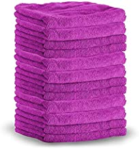 SHINE ARMOR PROFESSIONAL GRADE Super Absorbent PREMIUM MICROFIBER TOWELS for Car Cleaning & Auto Detailing - Wax, Buff, Wash, Dry, & Polish Colors May Vary (10-PACK)