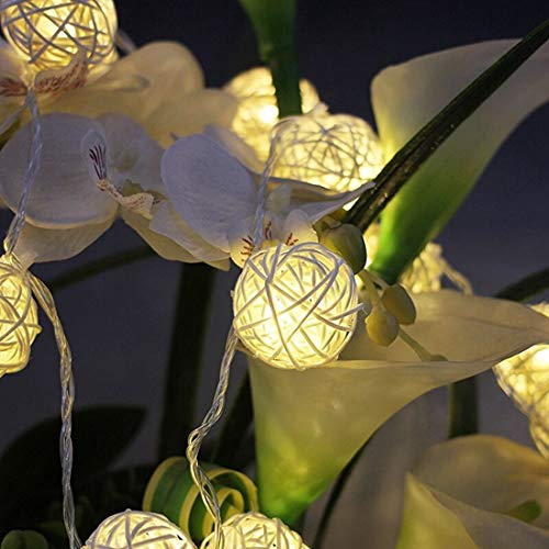 TFACR USB Powered LED String Lights, 5M 40 Globe Rattan Balls Decoration Fairy String, Bedroom String Lights for Indoor Outdoor Patio Garden Christmas Birthday Holiday Party Decor(Warm White)
