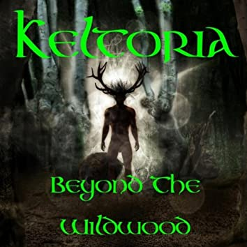 Beyond the Wildwood