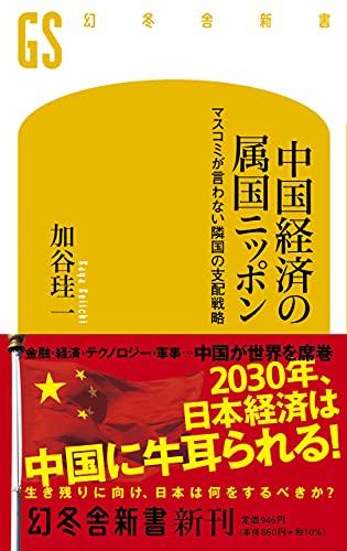 中国経済の属国ニッポン マスコミが言わない隣国の支配戦略 (幻冬舎新書)
