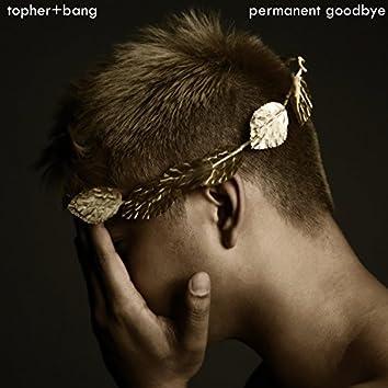 Permanent Goodbye