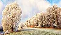 GooEoo 15 x 8フィートクリスマス新年の背景ビニール冷ややかな木草原冬景色背景新年クリスマスパーティーバナー子供赤ちゃん大人撮影風景壁紙イベントアクティビティ撮影