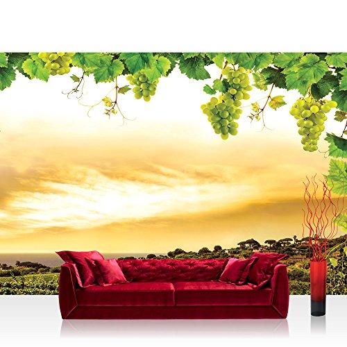 Fototapete 254x184 cm PREMIUM Wand Foto Tapete Wand Bild Papiertapete - Landschaft Tapete Landschaft Weinberge Weintrauben Blätter Natur Wolken grün - no. 1498