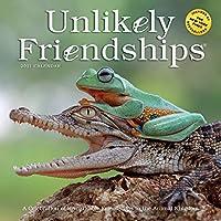Unlikely Friendships 2021 Calendar
