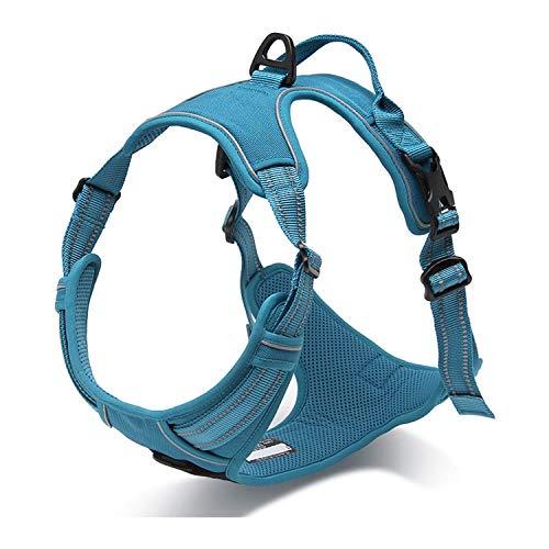 PETTOM Hundegeschirr Weiche Mesh Atmungsaktiv Einstellbare 3M Reflektierende Nylon Geschirr für Kleine Mittlere Große Hunde (XL(Chest Size:81-103 cm), Blau)