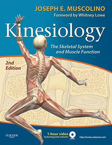 New Kinesiology - E-Book: The Skeletal System and Muscle Function