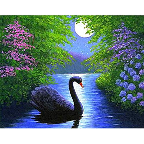 Yminng Full Square Drill Diamond 5D DIY Diamond Painting Photo Custom Swan in The Water 3D Embroidery Cross Stitch Mosaic Decor - Round Drill,60x80cm