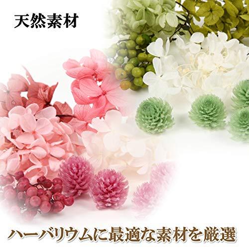 フェリナス2021母の日フラワーギフト誕生日結婚贈り物お礼お祝いお返し内祝い花プレゼント女性プリザーブドフラワー【ハーバリウムピンク&グリーン】kaku-pink-green