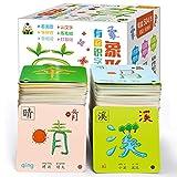 WDFDZSW 2 Sets de 100-8 páginas Jeroglyph Chino Tarjetas 1 y 2, adecuadas para bebés/niños pequeños/niños de 0 a 8, 8x8cm Tarjetas de Aprendizaje
