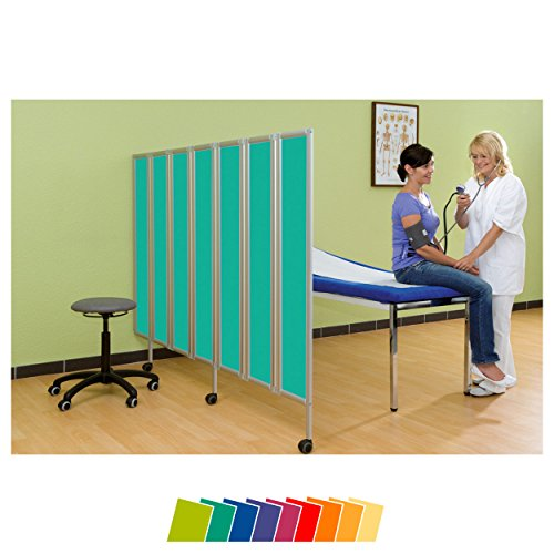 Sport-Tec Flexible Faltwand Raumteiler Sichtschutz Therapie Praxis, 4-flügelig 165x120 cm