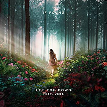 Let You Down (feat. Veda)