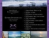 Ostsee-Entspannung – Syncsouls Baltic Moooods Vol. 1 – Meeresrauschen, Wellen, Möwen und Klänge zum Ausspannen und Beruhigen - 3