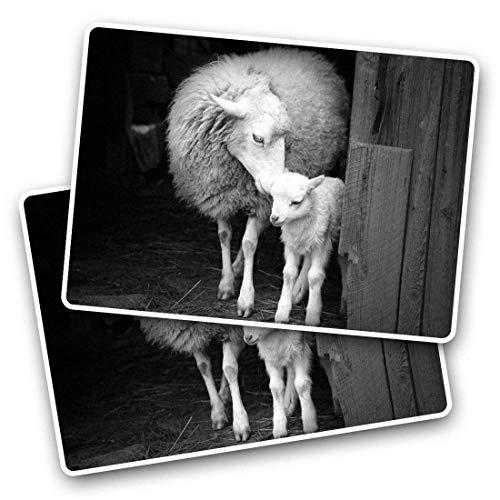 Fantastico adesivi rettangolari (set da 2) 7,5 cm – Mother & Baby pecore agnello agnello, divertenti decalcomanie per computer portatili, tablet, bagagli, scrapbooking, frigoriferi, ottimo regalo #36081