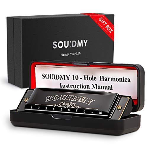 Armonica Souidmy, Blues Harmonica, con caja de regalo, para niños, principiantes, adultos con 10 agujeros 20 tonos, Major C, paño de limpieza, manual (negro)