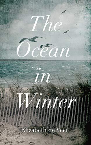 Image of The Ocean in Winter