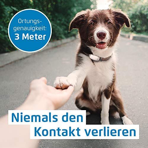 Prothelis GPS-Tracker (Peilsender) für die Ortung von Tieren, Personen, Koffern uvm Abbildung 3