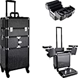 SunRise I3464 Professional 2-in-1 Rolling Makeup Artist Cosmetic Train Case Organizer Storage, Krystal Black, I3464KLAB