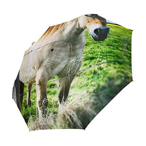 FANTAZIO drievoudige Travel Paraplu Paard Binnen Hek auto open paraplu Lichtgewicht
