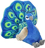 Wild Republic- CK Mini Pavo Real de Peluche, 20 cm (13811)